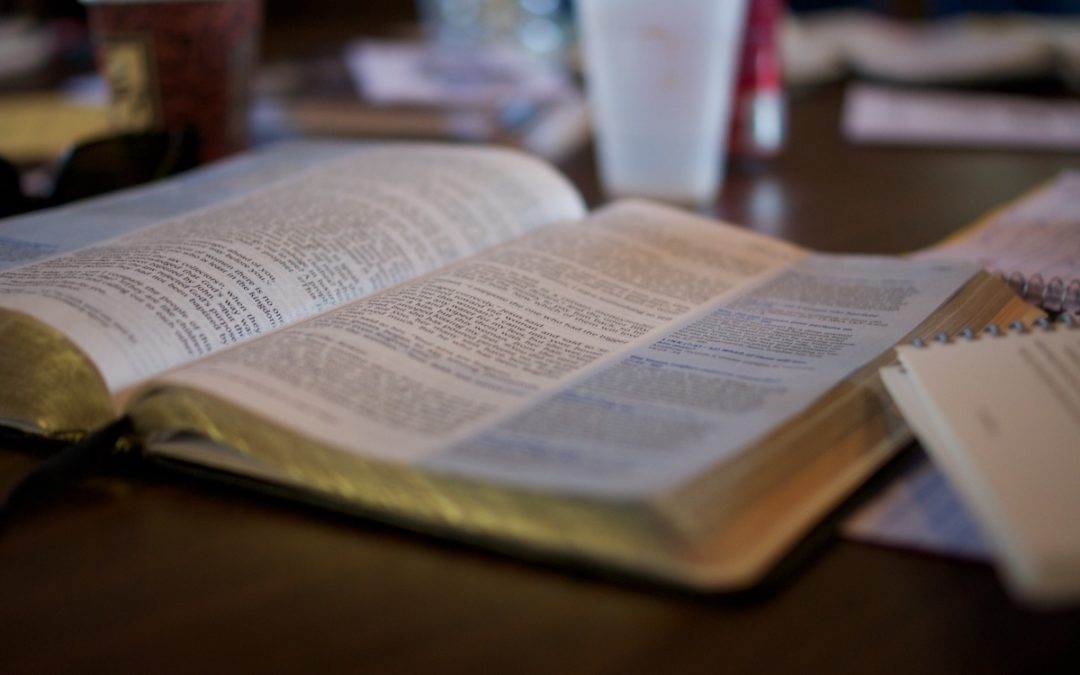 New Flourish workshop series provides introduction to the Bible